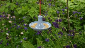 Blue Glazed Hanging Bird Feeder by Rosemarie Durr in garden
